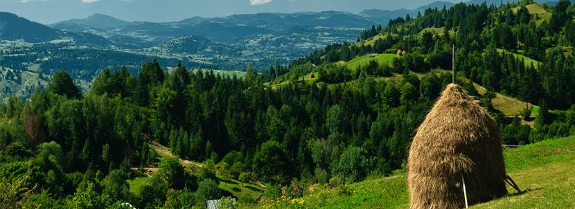 romania-landscape